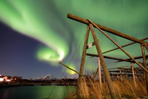 Aurora boreal a Lofoten